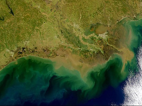 Satellite image of the Gulf of Mexico Dead Zone, courtesy of Phytoplankton Dynamics Laboratory, Texas A+M University