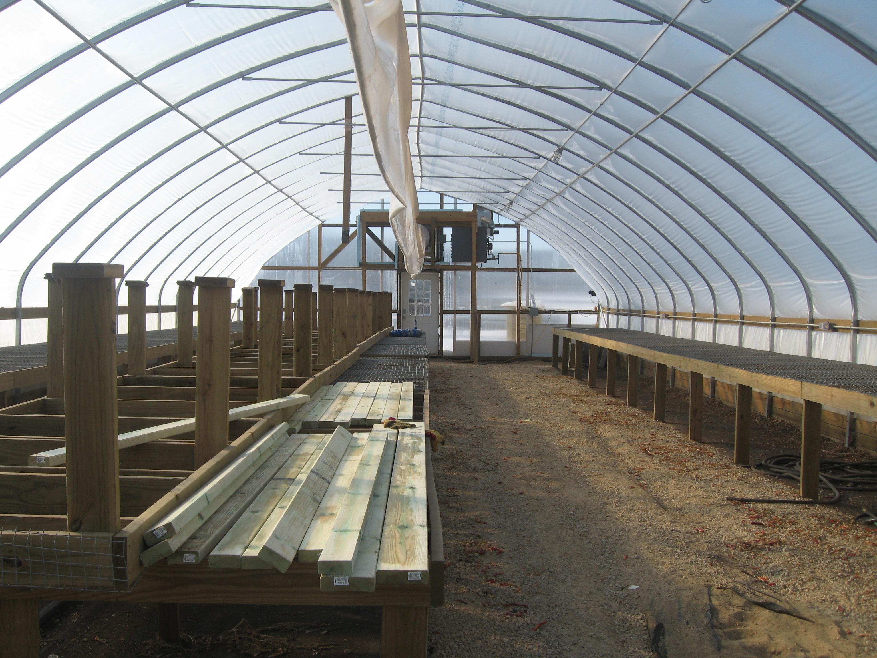 Featherstone's greenhouse, in process.
