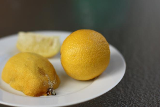 Good and bad lemon