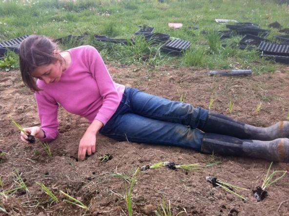 Kayla lounging and planting scallions at Phillies Bridge Farm Project