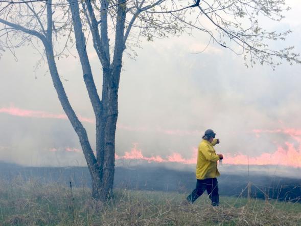 Prairie burn